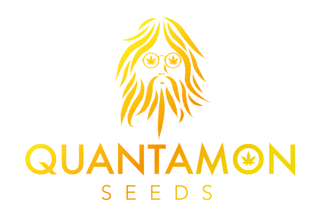 Logo Quantamon Seeds