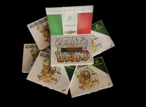 Cannabis seeds Gelato Italiano