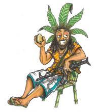 Seme di Cannabis - Rich47